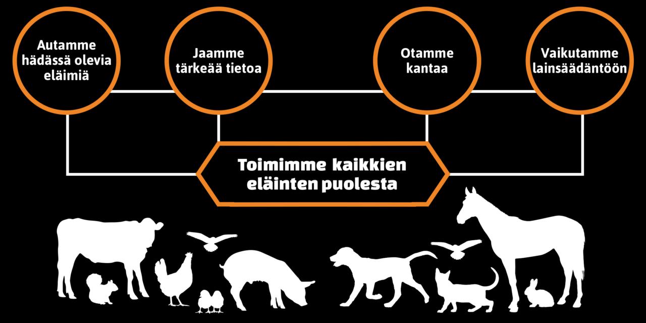 SEY Suomen eläinsuojelu on Suomen suurin eläinsuojelujärjestö ja eläinsuojelun asiantuntija. Kuvassa organisaatiokaavio, jossa kuvaillaan SEYn toiminnan osa-alueita.