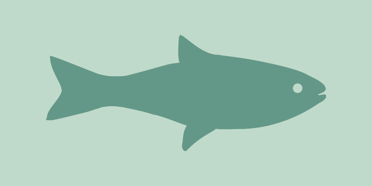 Kuvassa tumman vihertävä kalasiluetti vaaleanvihreällä pohjalla