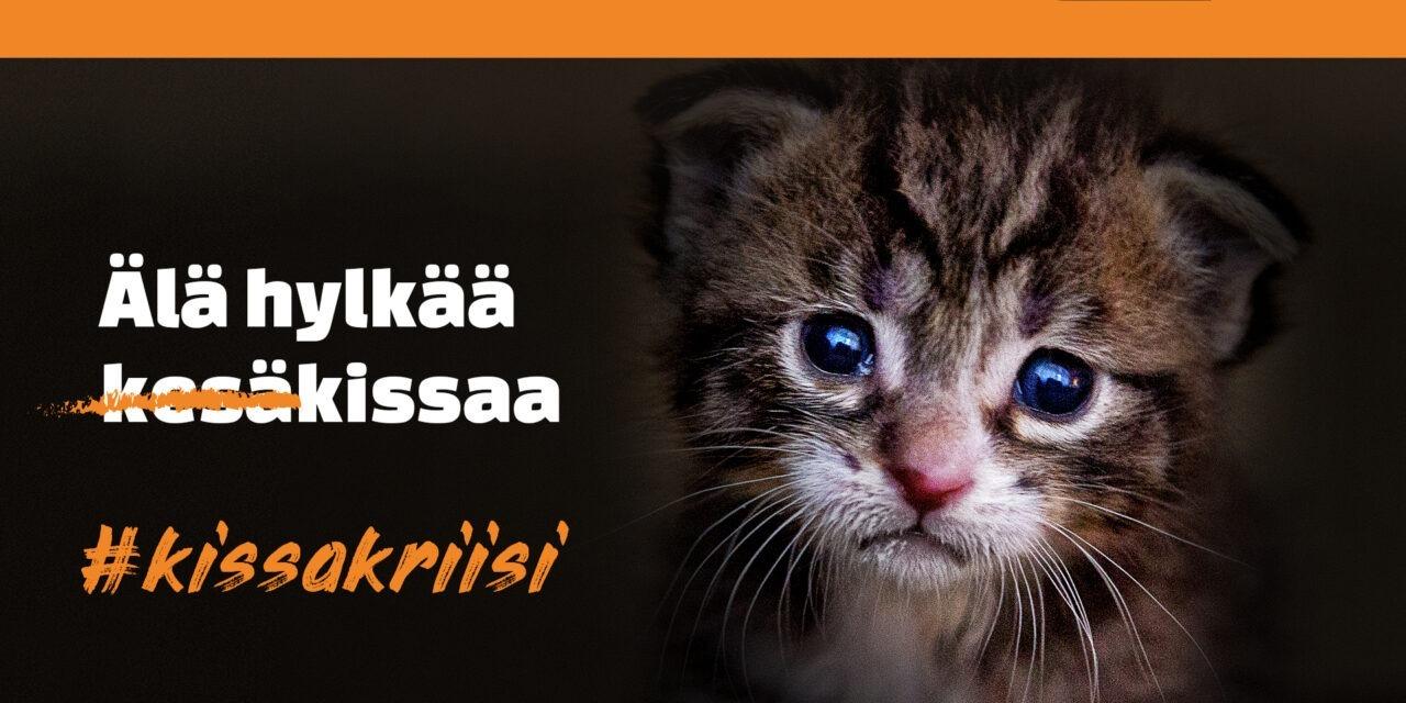 """Surusilmäinen kissanpentu katsoo suoraan kameraan. Musta tausta ja ylhäällä kulkee kirkas oranssi palkki. Kissan vieressä teksti """"Älä hylkää kissaa - #kissakriisi"""""""