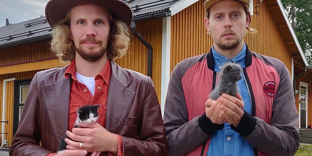 Kaksi pientä kissanpentua kahden vakavailmeisen ihmisen sylissä
